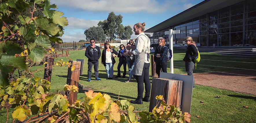 Wine Tours In The Barossa Valley, Attract Numerous Tourist